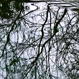 Bath - reflections